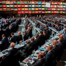 ФИФА определит хозяина ЧМ-2026 13 июня 2018 года