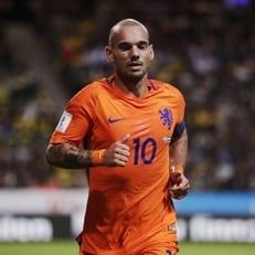 Снейдер завершил карьеру в сборной Нидерландов